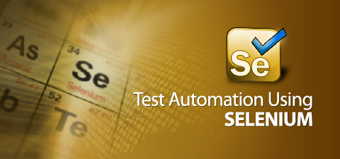 Selenium Verify Image Present Example
